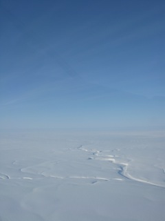 In many places above the tree line, the Arctic is a world of vast white.