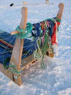 Rear of dog sled with various ropes, tow lines, and harnesses.