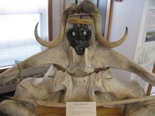 A Cambridge Bay display using the horns of a musk ox and whale vertebrae.