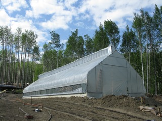 Greenhouses, taking full advantage of the Land of the Midnight Sun, produce a multitude of vegetable crops.